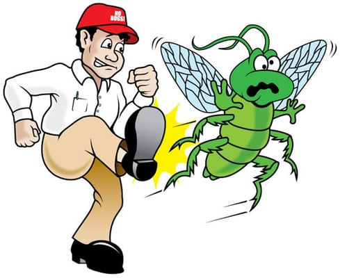 l مكافحة الحشرات بالخرج شركة كلين لانج 0508020877