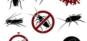 46 300x143 9 طرق لمنع الحشرات الدخول منزلك