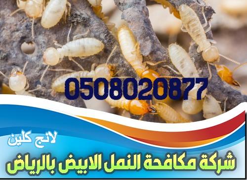 2 1 1 مكافحة النمل الأبيض بالرياض شركة كلين لانج 0508020877
